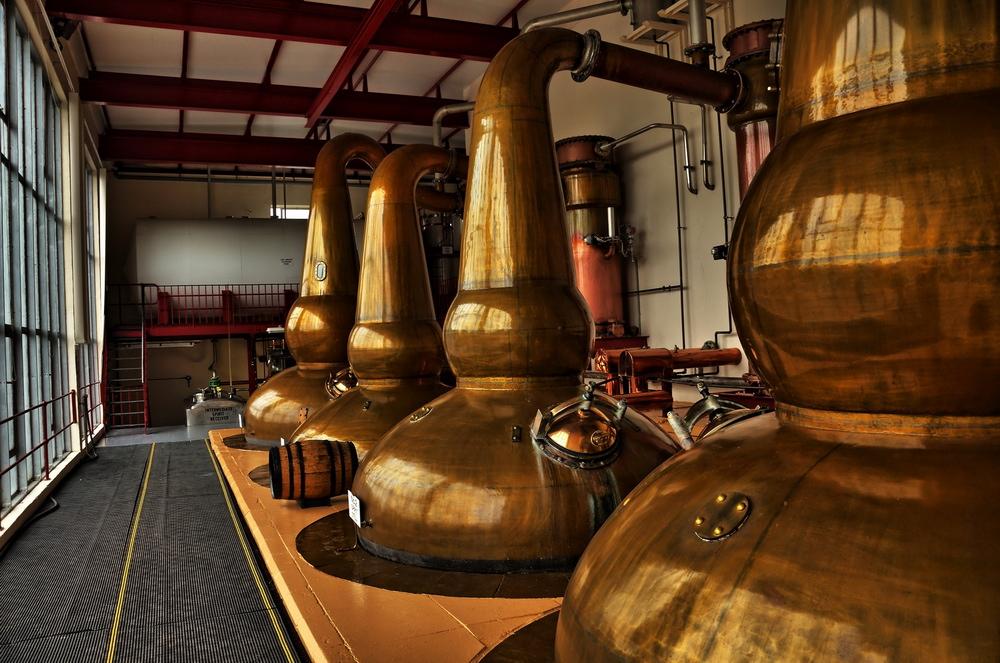 blended czy single malt? rodzaje whisky
